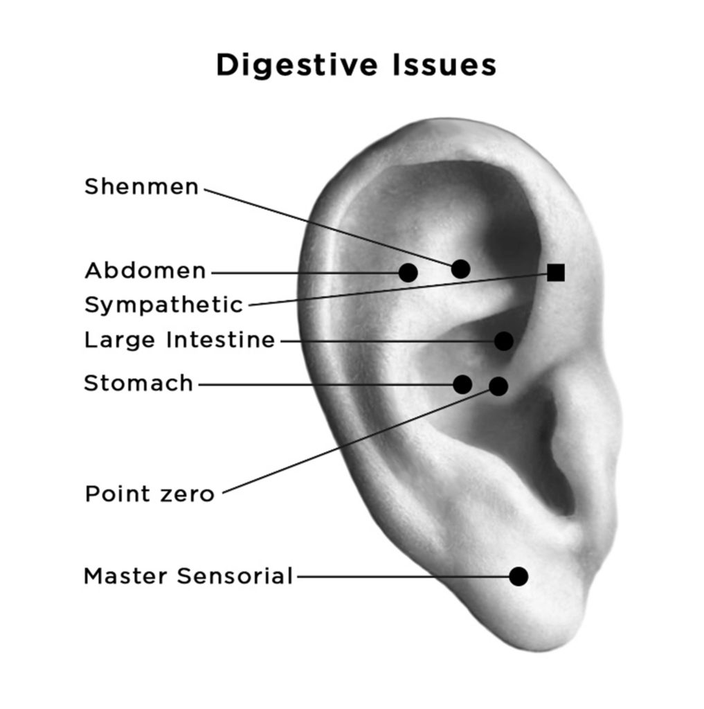 auriculotherapy points for digestive issues