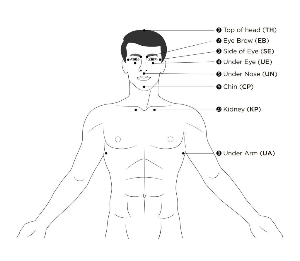 acupoint diagram showing points on torso