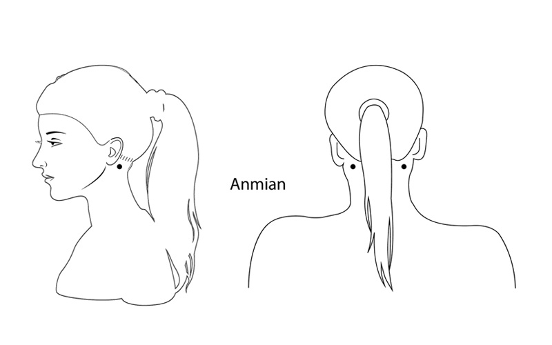 anmian acupoint