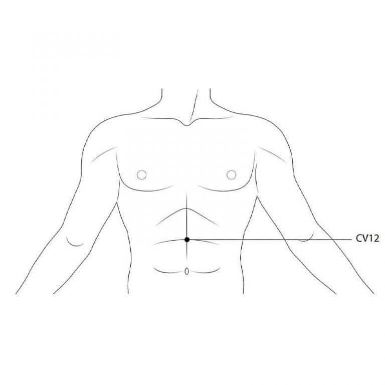 acupoint on torso